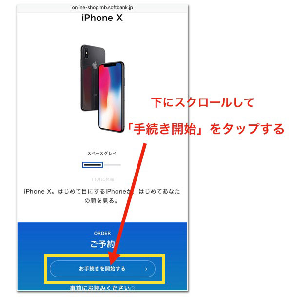 ssbiphonex001.jpg
