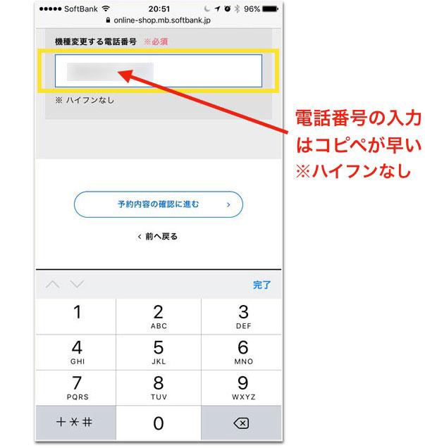 ssbiphonex0013.jpg